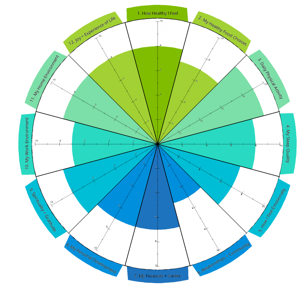 wheel 1024x964 - Wellness Wheel of Life Assessment
