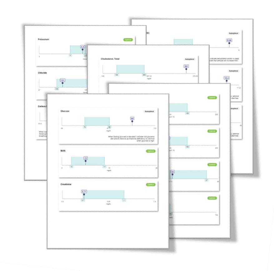 Functional Wellness Lab Report - 360 Wellness Assessment & Goal Setting Session