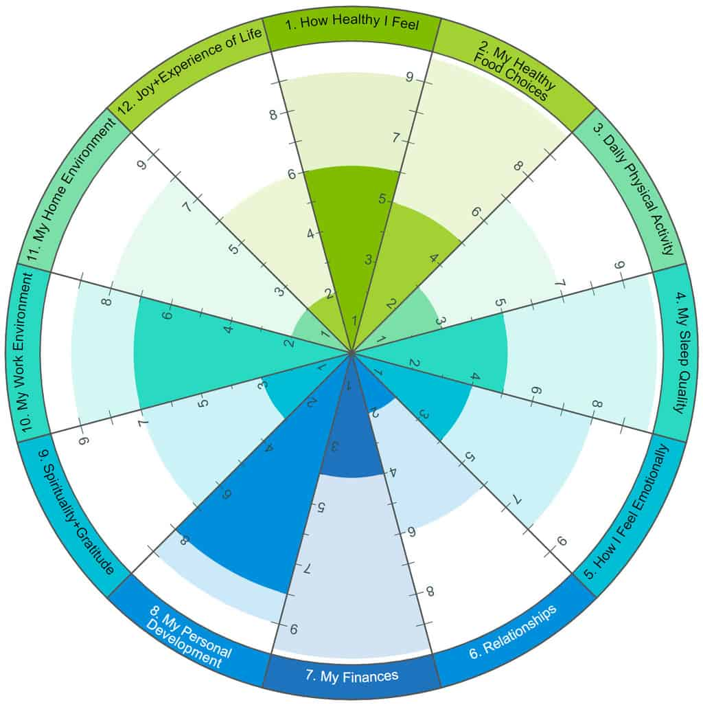One Degree Health's Wheel of Life Assessment with the 12 dimensions of health.